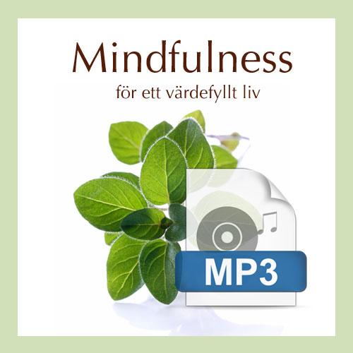Mindfulnessövningar ljudfiler